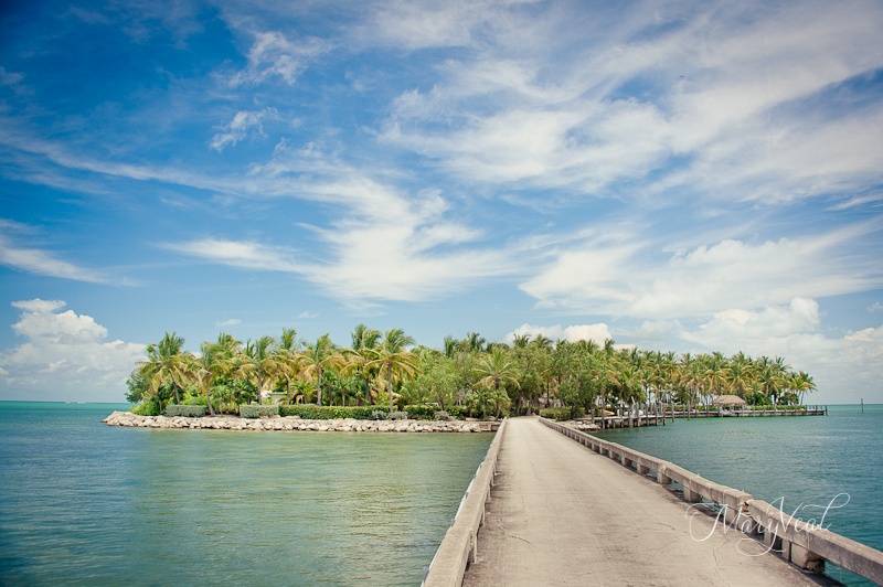 Palm Island Florida Keys Photographer